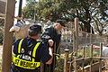 FEMA - 15247 - Photograph by Jocelyn Augustino taken on 09-11-2005 in Louisiana.jpg