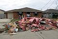 FEMA - 21400 - Photograph by Greg Henshall taken on 01-16-2006 in Louisiana.jpg