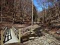 Fall Run Park in Shaler Township, late winter - 10.jpeg