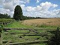 Farmland by Little Bradley - geograph.org.uk - 1460184.jpg