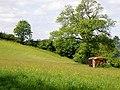 Farmland near Ferryside - geograph.org.uk - 807149.jpg