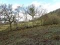 Farmland near Troed-y-rhiw - geograph.org.uk - 1132515.jpg