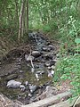 Fauerbach Basaltbett an Magertriften DSCF0963.jpg