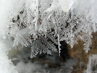 Snow - Freshly fallen snowflakes.