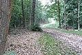 Fence Wood - geograph.org.uk - 975975.jpg