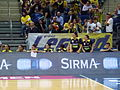 Fenerbahçe Women's Basketball - BC Nadezhda Orenburg 15 April 2016 (49).JPG