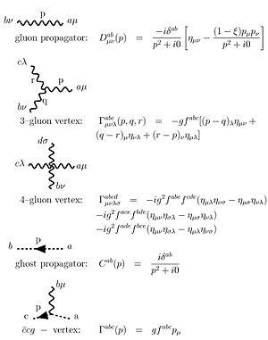Yang–Mills theory