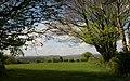 Field below Pepperdon Down - geograph.org.uk - 1290928.jpg