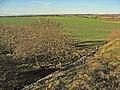 Fields from former railway bridge - geograph.org.uk - 327914.jpg