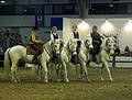 Fieracavalli 2014 - Delta3.jpg