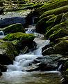 Flickr - Nicholas T - Apollo County Park (3).jpg
