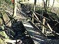 Footbridge - geograph.org.uk - 125860.jpg