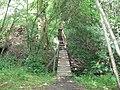 Footbridge and steps - geograph.org.uk - 1315431.jpg