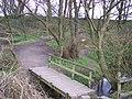 Footbridge on The Goyt - geograph.org.uk - 735115.jpg