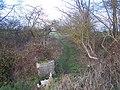 Footpath in Bells Wood - geograph.org.uk - 1121834.jpg