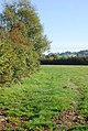 Footpath to New Lane Farm - geograph.org.uk - 588985.jpg