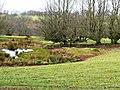 Footpath to Rhyswg-ganol - geograph.org.uk - 653102.jpg