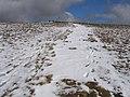 Footpath to Whernside summit - geograph.org.uk - 747412.jpg