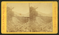 Frankenstein Trestle work. (C) P. & O.R.R, by J.W. & J.S. Moulton 2.png