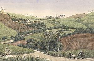 Frederik von Scholten - Image: Frederik von Scholten Montpellier and Two Friends. St. Croix