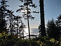 From the overlook - looking toward Japan! (48832889028).jpg