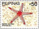 Fromia 2010 stamp of the Philippines.jpg