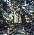 Fukuou shrine , 福王神社 - panoramio (13).jpg