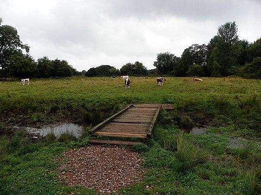 GOC Radwell-Rivers and Meadows 004 Footbridge (9815138636)