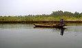 Gambia boat.jpg