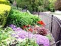 Garden flowers in Roker Park - geograph.org.uk - 2366013.jpg
