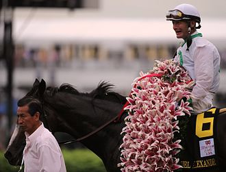Kentucky Oaks - Image: Garland of Star Gazer Lillies