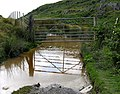 Gate over a pond^ - geograph.org.uk - 899573.jpg