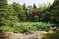 Genchuji Tottori12n4592.jpg
