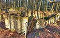 Gesprengter Bunker im Beckinger Wald 18.jpg