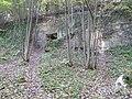Geulhem-Geologisch monument Zuidelijke Dalwand Geul (3).JPG