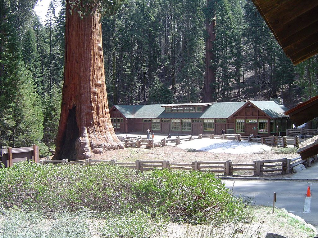 sequoia national park muslim Sequoia national park is often overlooked by its neighbor, yosemite but the largest living thing on earth, the general sherman tree, is worth seeing.