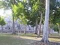 Giardino del Tempio - panoramio.jpg