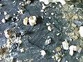 Glacial cave floor.jpg