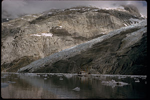 Glacier Bay National Park and Preserve GLBA1714.jpg