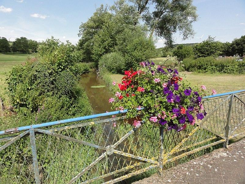 Gogney (M-et-M) ruisseau