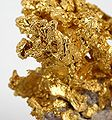 Gold-vlt-21f.jpg