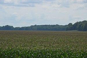 Tippecanoe Township, Tippecanoe County, Indiana - Fields east of Prophetstown State Park