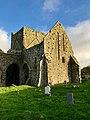 Graveyard, Hore Abbey, Caiseal, Éire - 46585810371.jpg