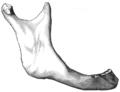Gray185.png