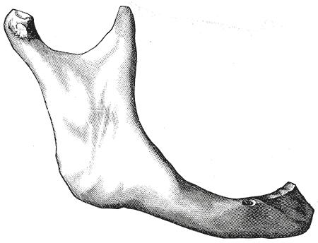 Gray185