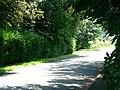 Greengate Lane entering South Duffield - geograph.org.uk - 196676.jpg