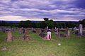 Greenwood-cemetery-doyle-tn1.jpg