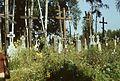 Groby na cmentarzu prawosławnym - nieznana - 000815s.jpg
