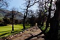 Groot Constantia - panoramio (17).jpg