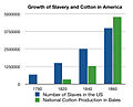Growth of Slavery and Cotton in America.jpg